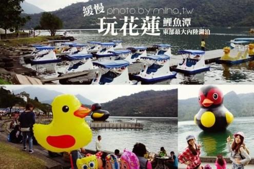 花蓮》黃色小鴨大變身:花蓮鯉魚潭紅面番鴨跟你一起從新年玩到元宵