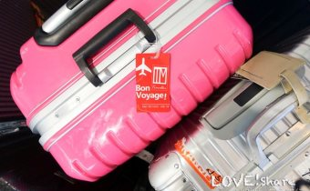 旅行》超美超搶眼 鏡面Deseno 29吋鋁框PC鏡面行李箱 開箱實用