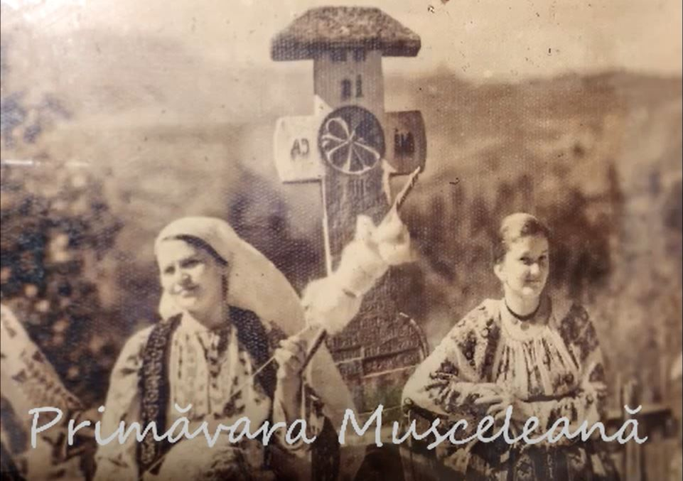 Tur virtual într-o primăvară Musceleană 2