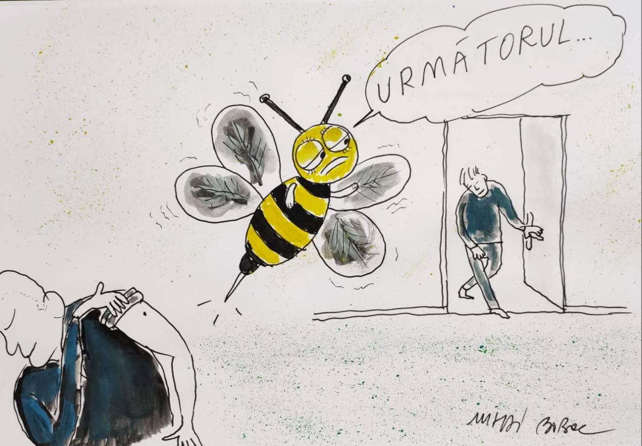 Albinuța 1