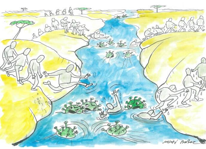 Marea migrație... la Valul 4 4
