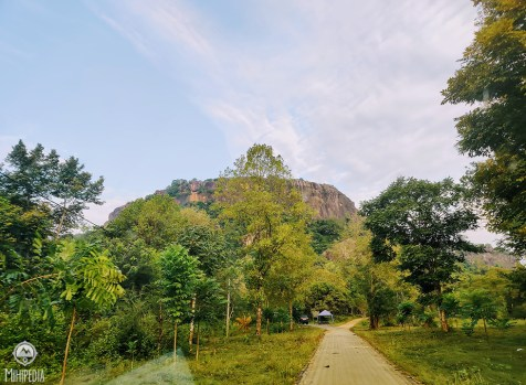 Danigala Rock