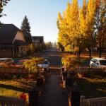 聖地シャスタ山の宿「ストーニーブルックイン」からシャスタの紅葉をお届けします!
