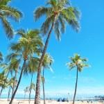 【ハワイ】クレジットカードおすすめ5選!特典豊富なJCB!VISAは世界NO1!