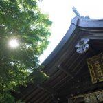 パワースポット「志賀海神社」での不思議な話!宇宙の時間軸で動くと奇跡の旅!エゴを手放す!