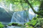 【九州の滝】鍋ケ滝!パワースポット滝3選!癒しと浄化!滝の裏側までまわれる