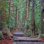 心機一転!変わりたい? 蘇りの地「熊野古道」で神様のパワーを授かろう!