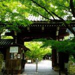 【京都】青もみじ名所の永観堂は最高!のはずが失敗談?!見返り阿弥陀さまにお祈り…
