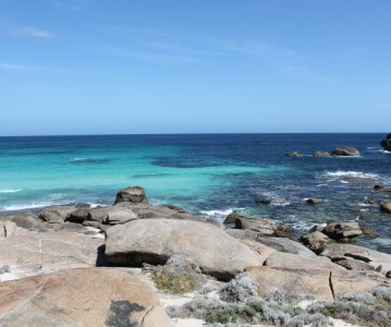 A Recap of my Last Month in Australia in Photos