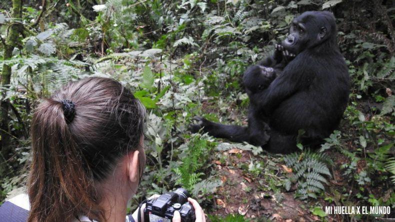 trekking gorilas (17)