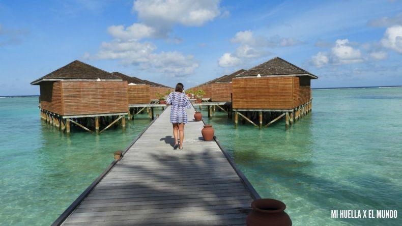 MALDIVAS (6)