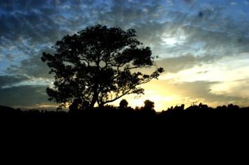 Sunset in Oromiya.