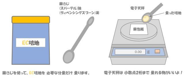 大腸菌の検査⑦.