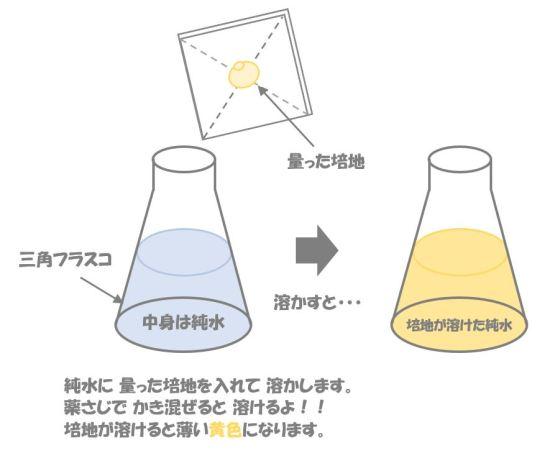 クロストリジウムの検査②