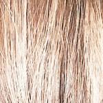 10 Light Blonde