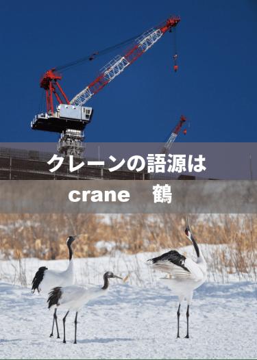 クレーン車の「クレーン」の語源は、英語の【crane:鶴】