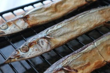 魚焼きグリルの「グリル」は英語で【grill:網焼き】