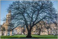 Dublin Trinity College-6851