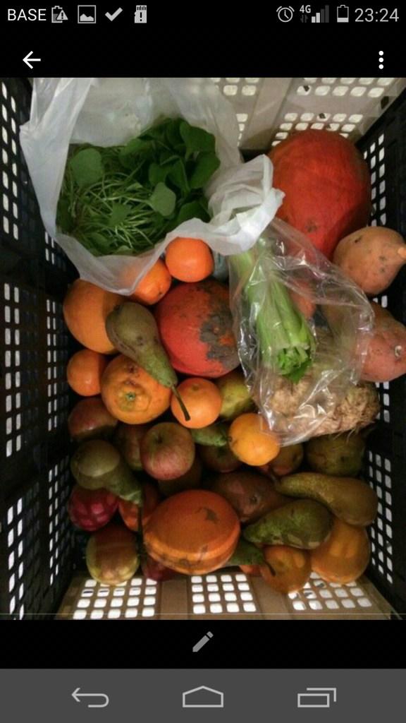 een klein groenten en klein fruit pakket