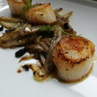 coquilles met witloof - sint-jacobsvruchten with love - en truffel