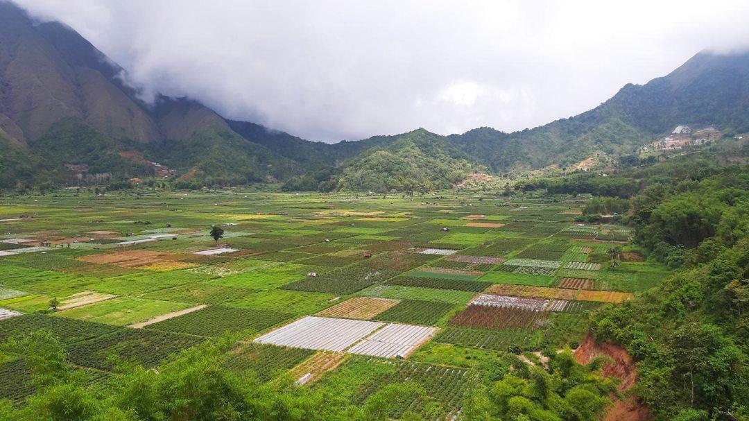 Sembalun-Viewpoint