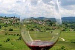 movia wijn, Mydeliciousjourney