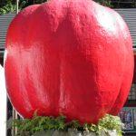 道の駅はがは近畿で一番古くてリンゴが有名?