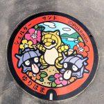 ポケモン好き必見!地方に広がるポケフタとポケスタを集めてみよう!(鳥取編)