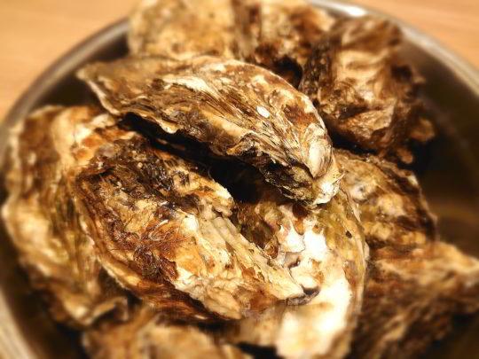 新鮮生牡蠣