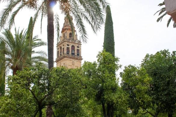 Cour Mezquita
