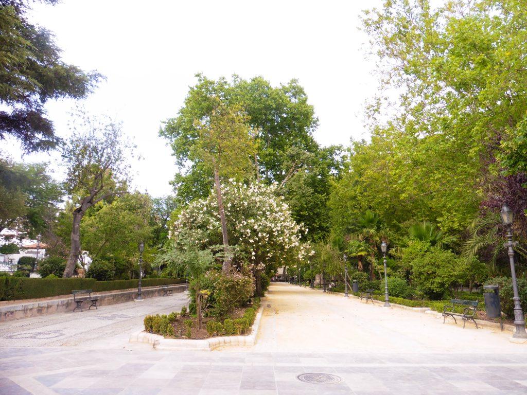 Ronda, square
