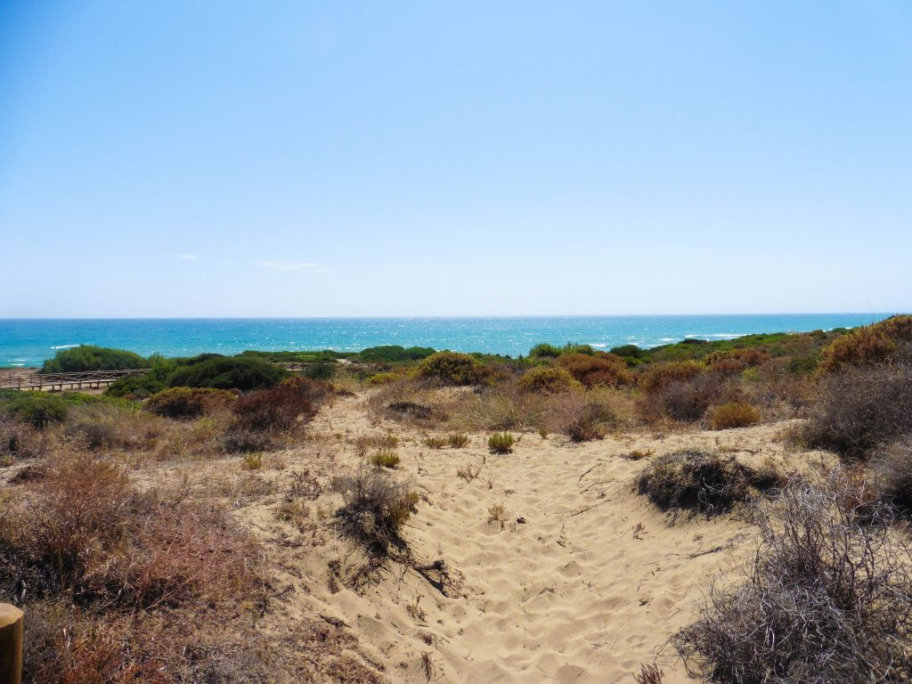 plage cabopino
