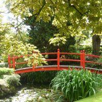 Ogrody Japońskie w Kildare