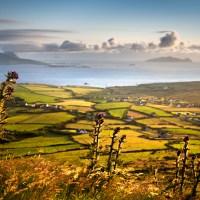 Nie jedź do Irlandii na wakacje