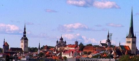 Viron ev.lut. kirkon piispa