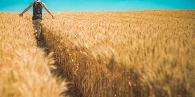 Evankelioiminen ja kristittyjen yhteys