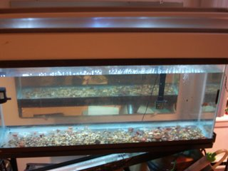 LED aquarium light hood