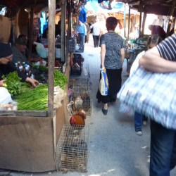 Live chickens can be purchased in this market