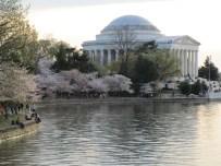 The Jefferson Memorial across the Tidal Basin