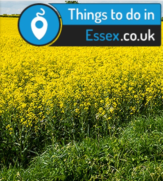 Things to do in Essex
