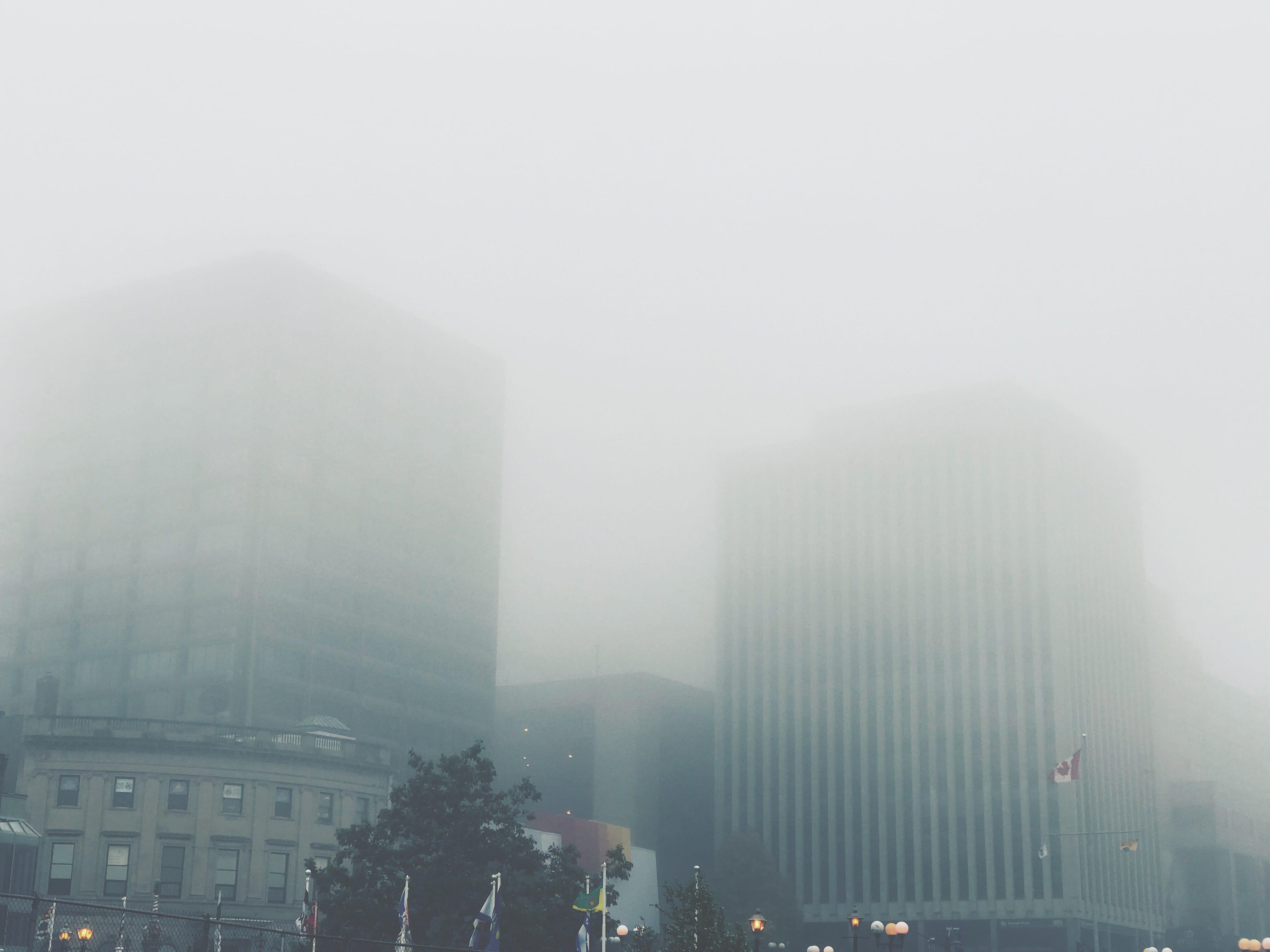 A photograph depicting Foggy Saint John Buildings