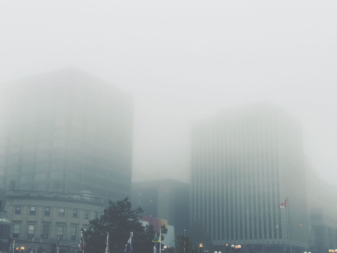 Click thumbnail to see details about photo - Foggy Saint John Buildings Photograph