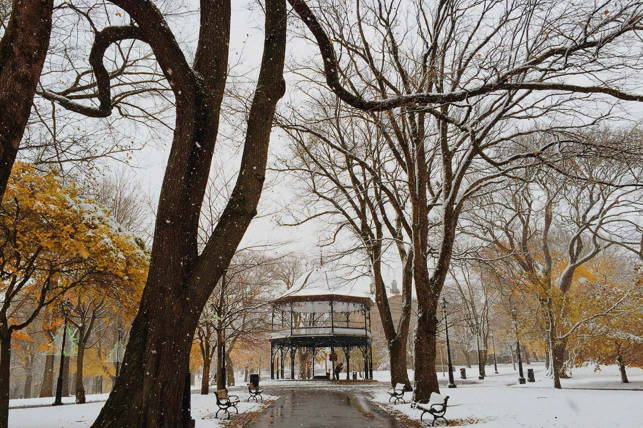 A photograph depicting Kings Square Snowy Fall