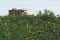 partridge island saint john 36964549536 o