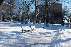 Snowy Kings Square Photograph
