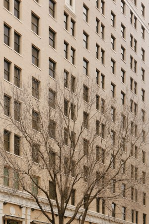 A photo of Austin Texas Building Facade With Tree
