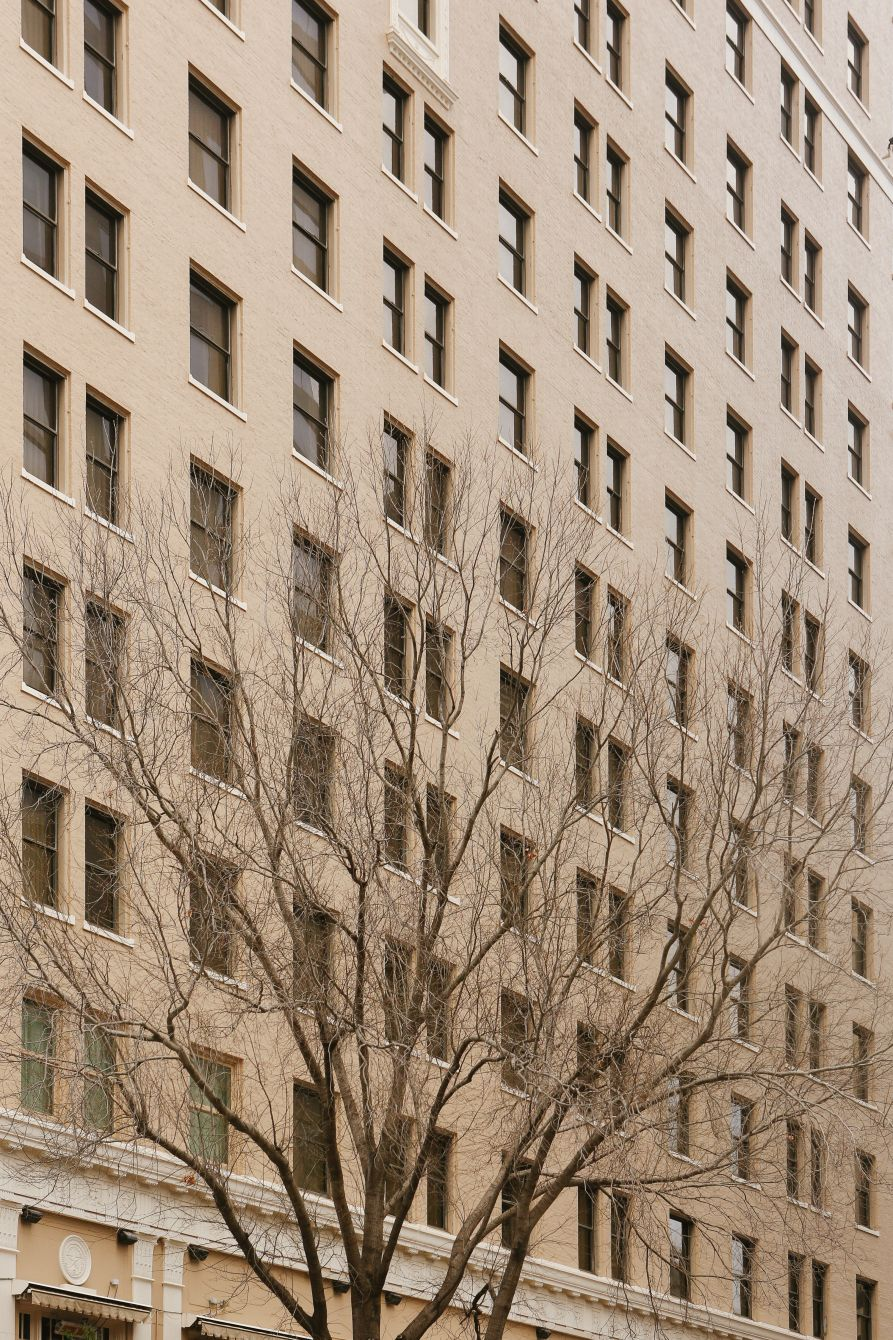 Click thumbnail to see details about photo - Austin Texas Building Facade With Tree