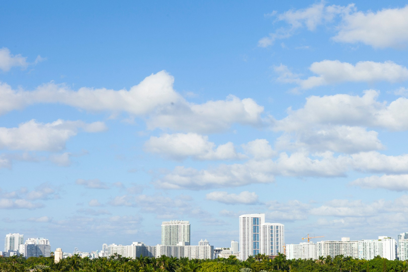 A photo of Florida Stock images 5