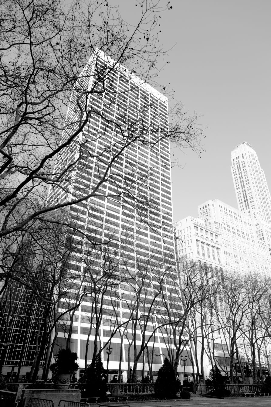 Click thumbnail to see details about photo - New York City W R Grace Building From Bryant Park