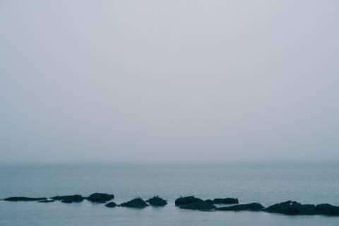 A photo of Birds sitting on rocks in Ocean